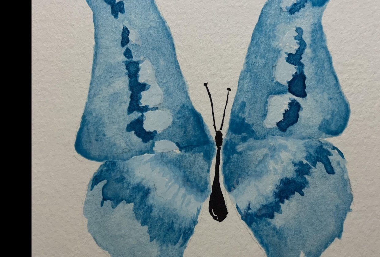 Blue and Purple Butterflies - student project