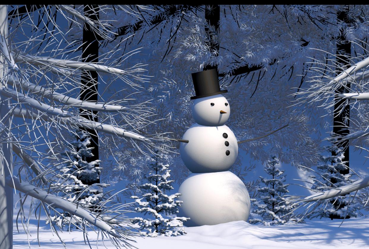 Mr. Snowman - student project