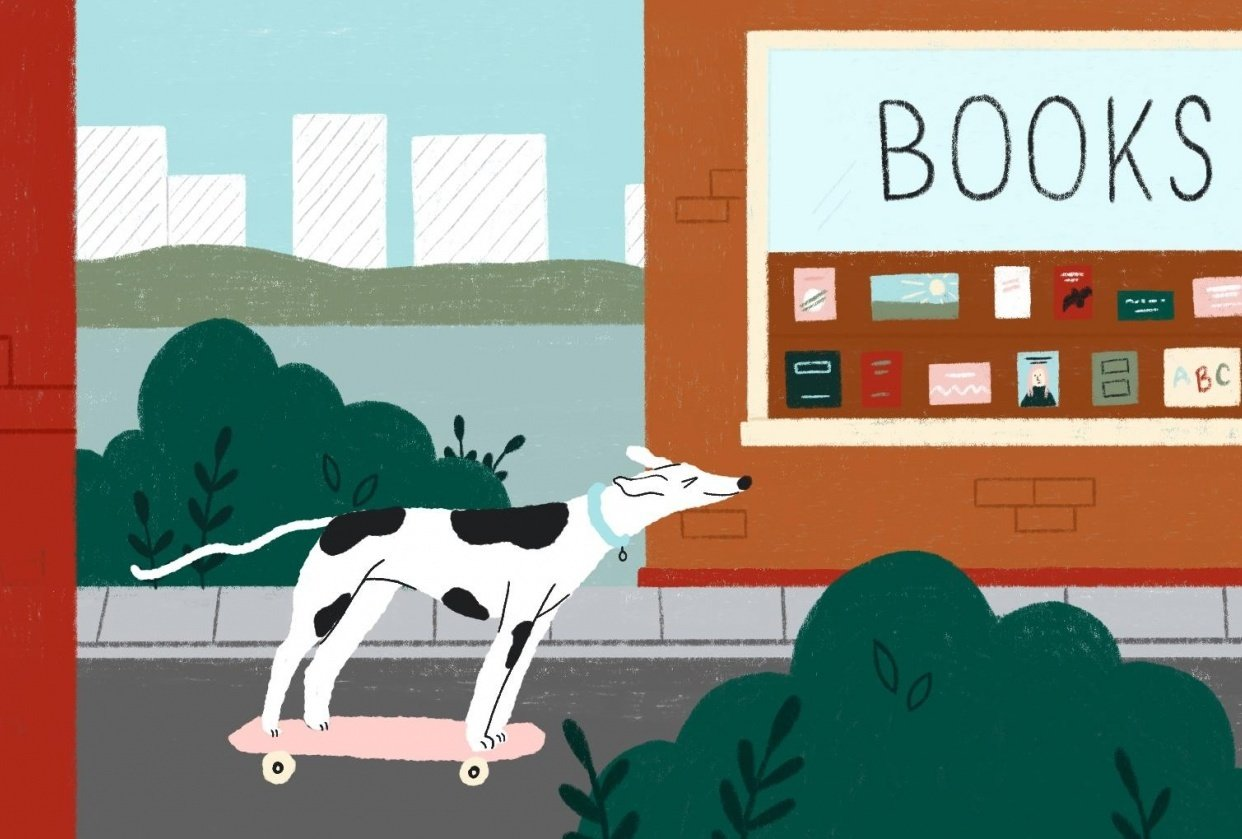 Greyhound Skateboarding - student project