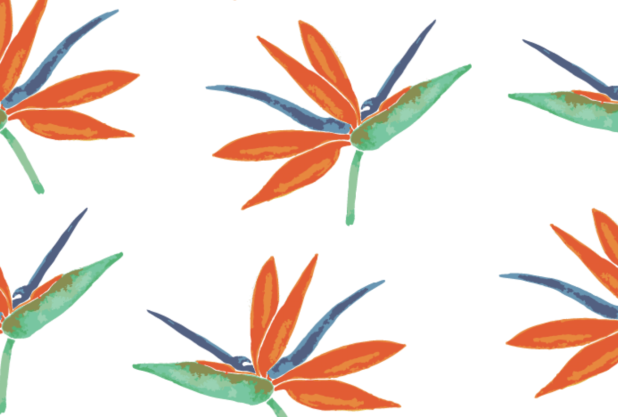 Bird of paradise repeat pattern - student project