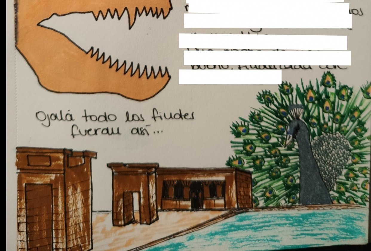 Illustrated journal of my weekend - student project