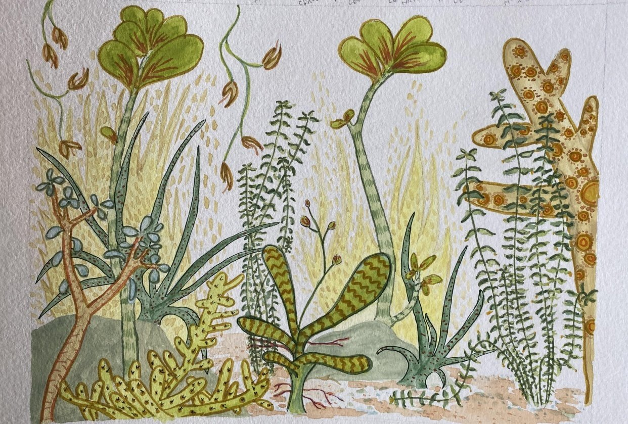 Imaginary Botanic Garden - student project
