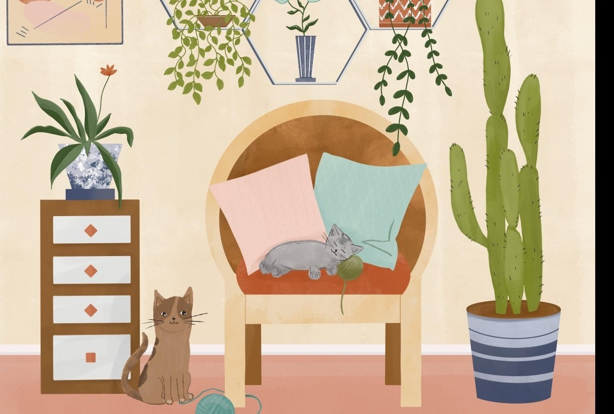 Cats just love it here :) - student project