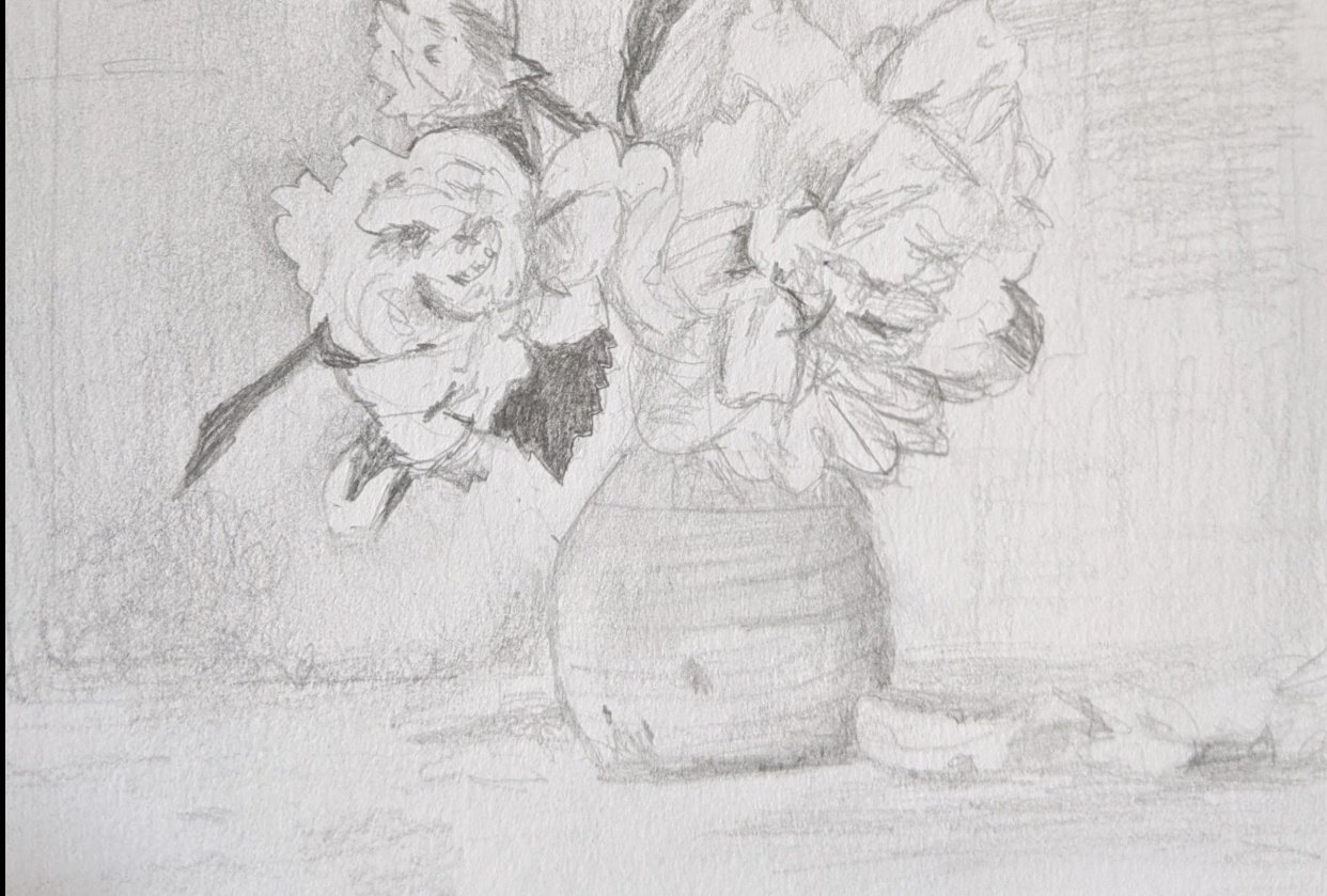 Pencil Study - student project