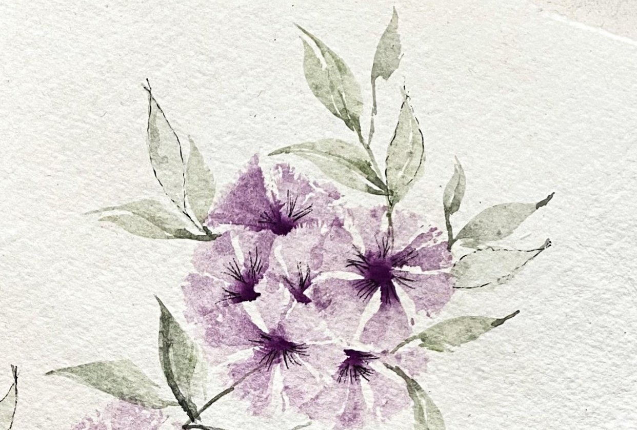 Violet blooms - student project