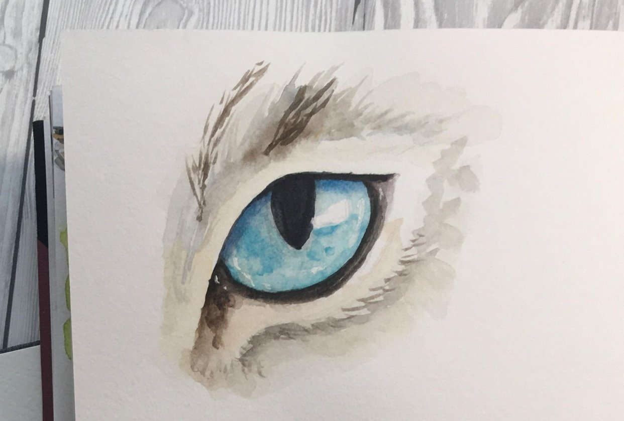 Animal Eyes in Watercolor - student project