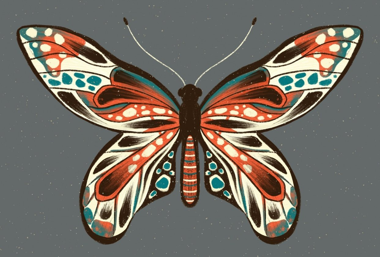 Insect Illustrations - student project