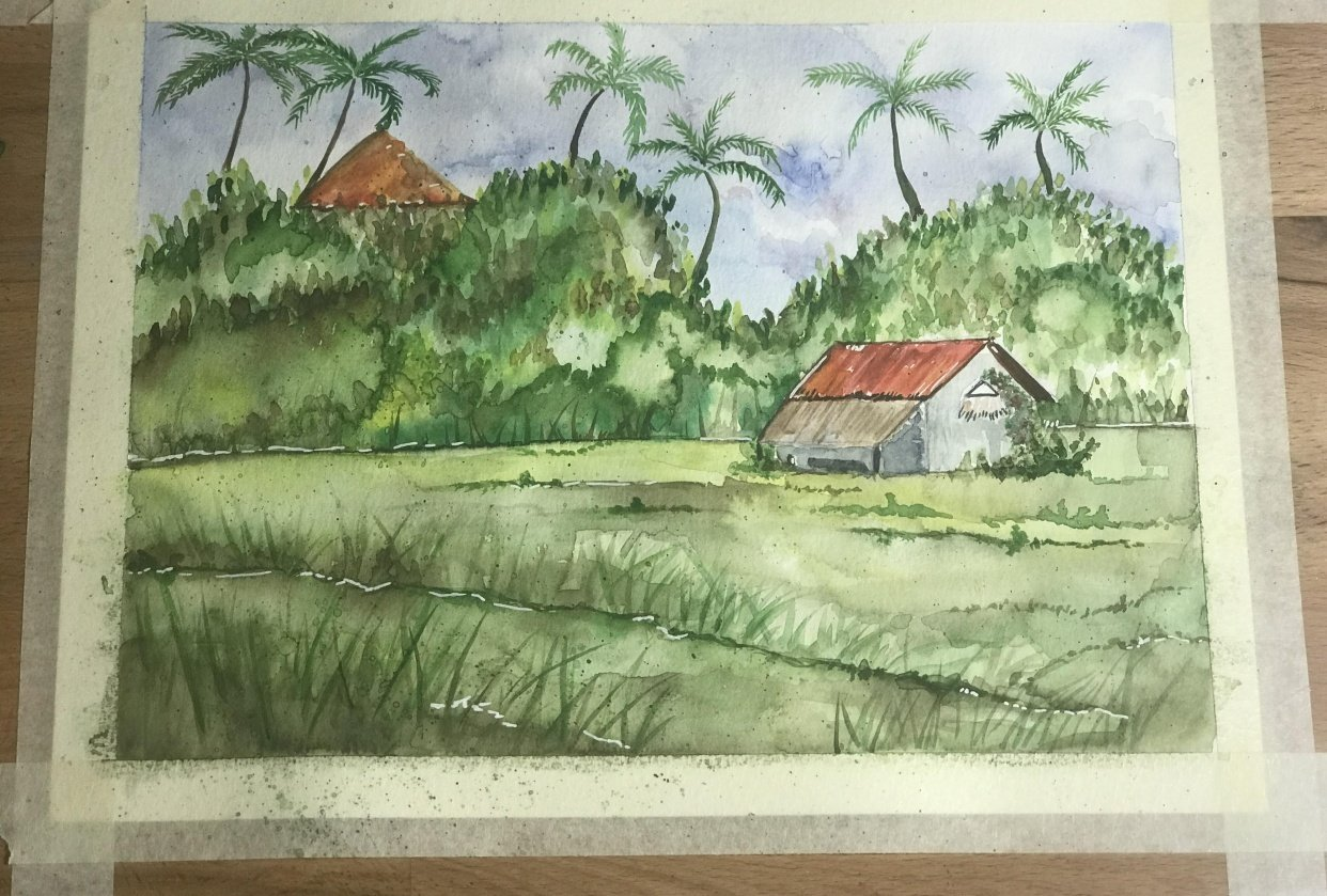 the rice farm - student project