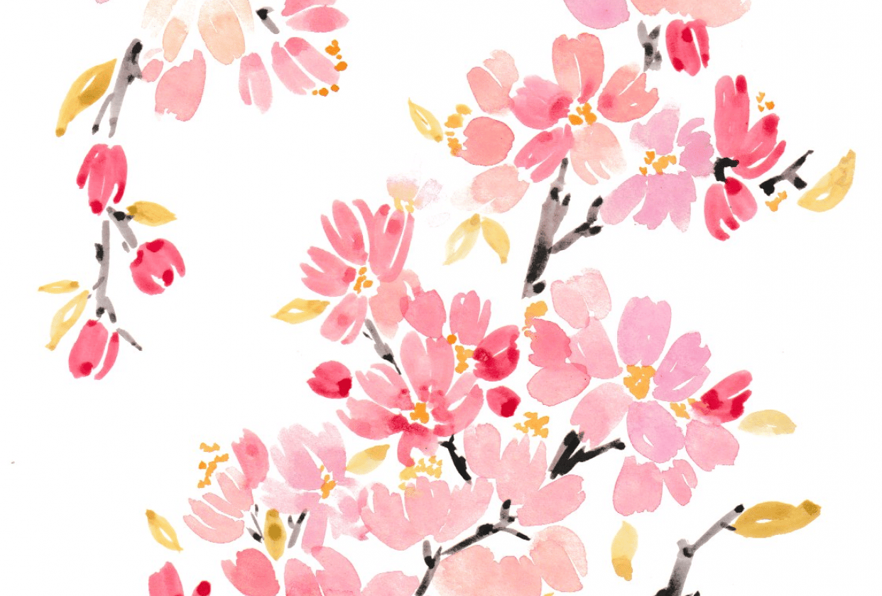 Watercolor Cherry Blossoms - student project