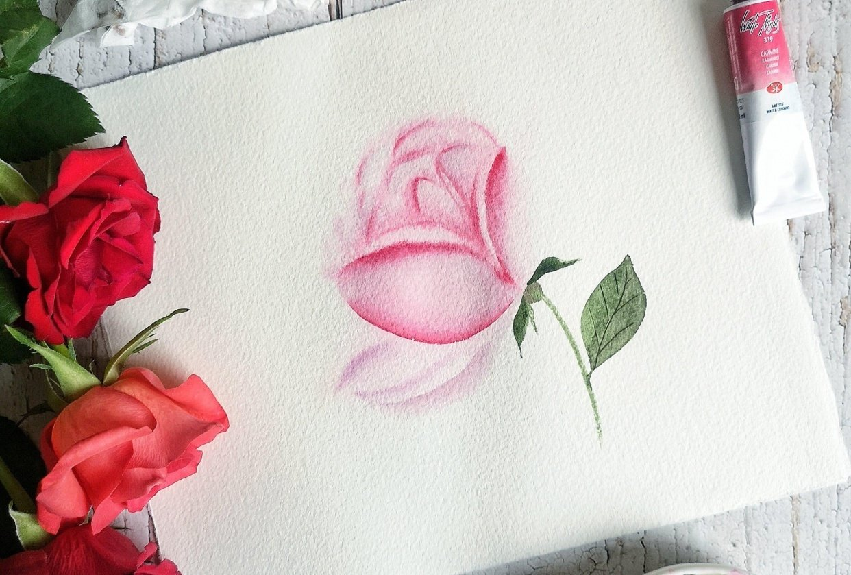 Watercolor Loose Rose - student project