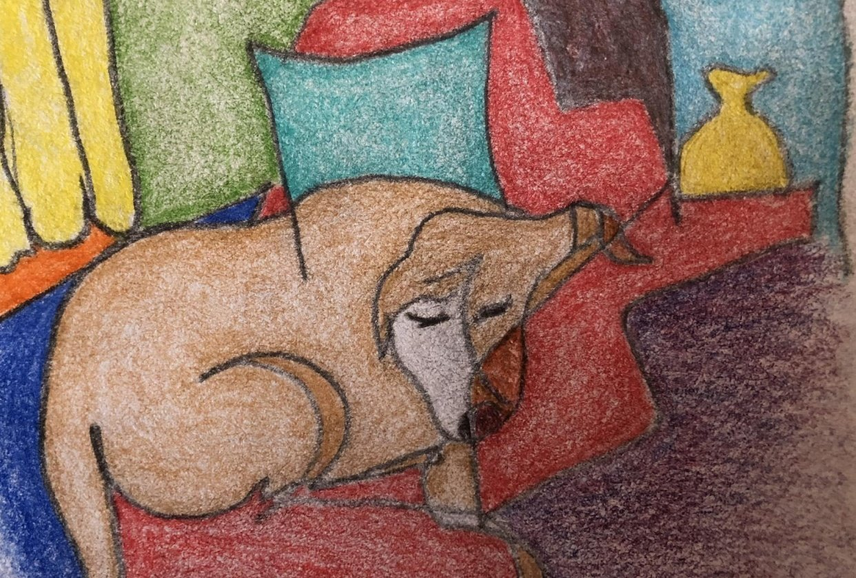 Trixie Naps - student project