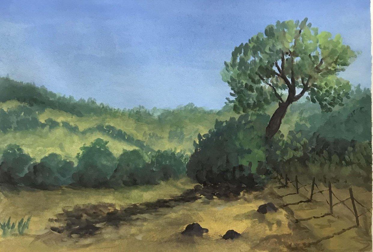 Landscape #1 - student project