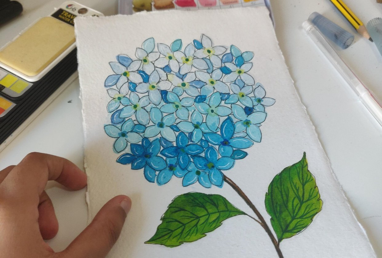 Project Hydrangea - student project