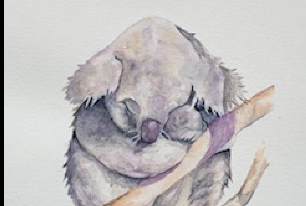 Koala Bear - student project