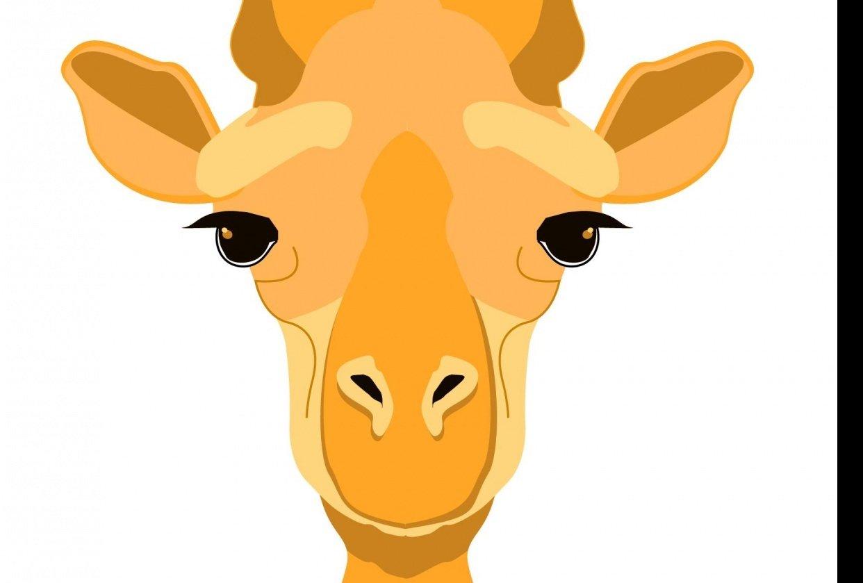 Girafa - student project