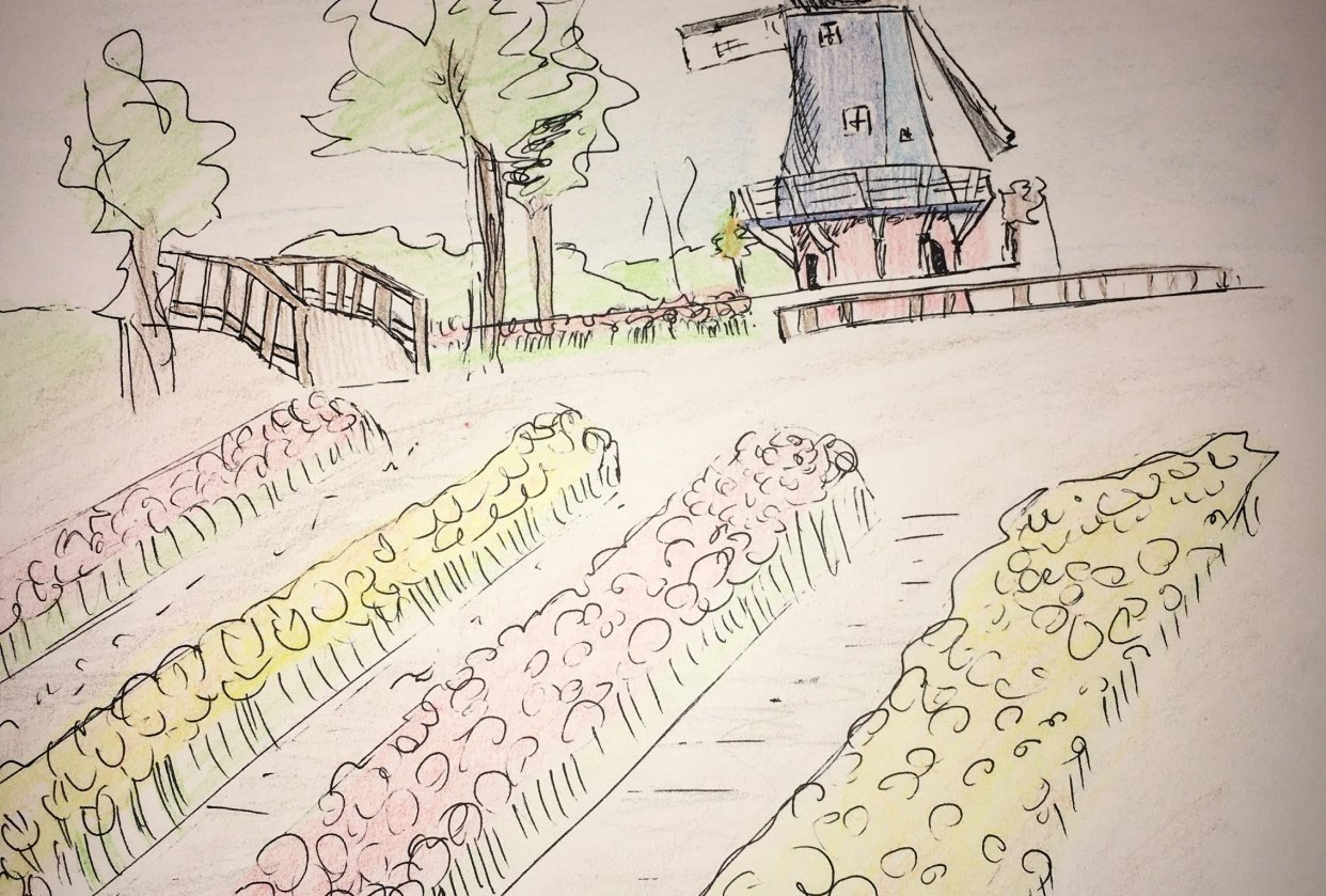 Sketch of the tulip festival in Holland, MI - student project