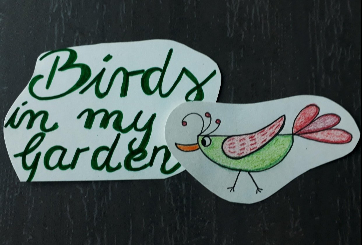 Birds in my Garden (^^) - student project