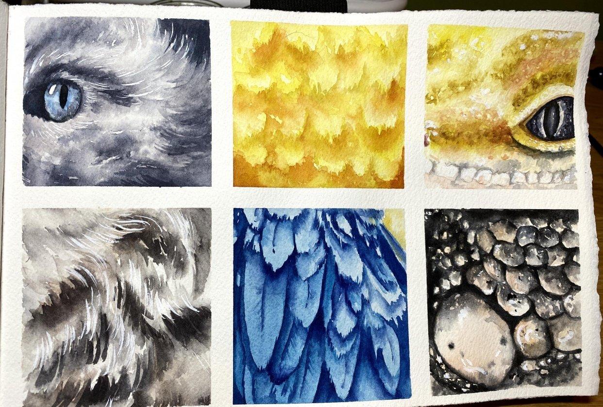 Texture Studies - student project