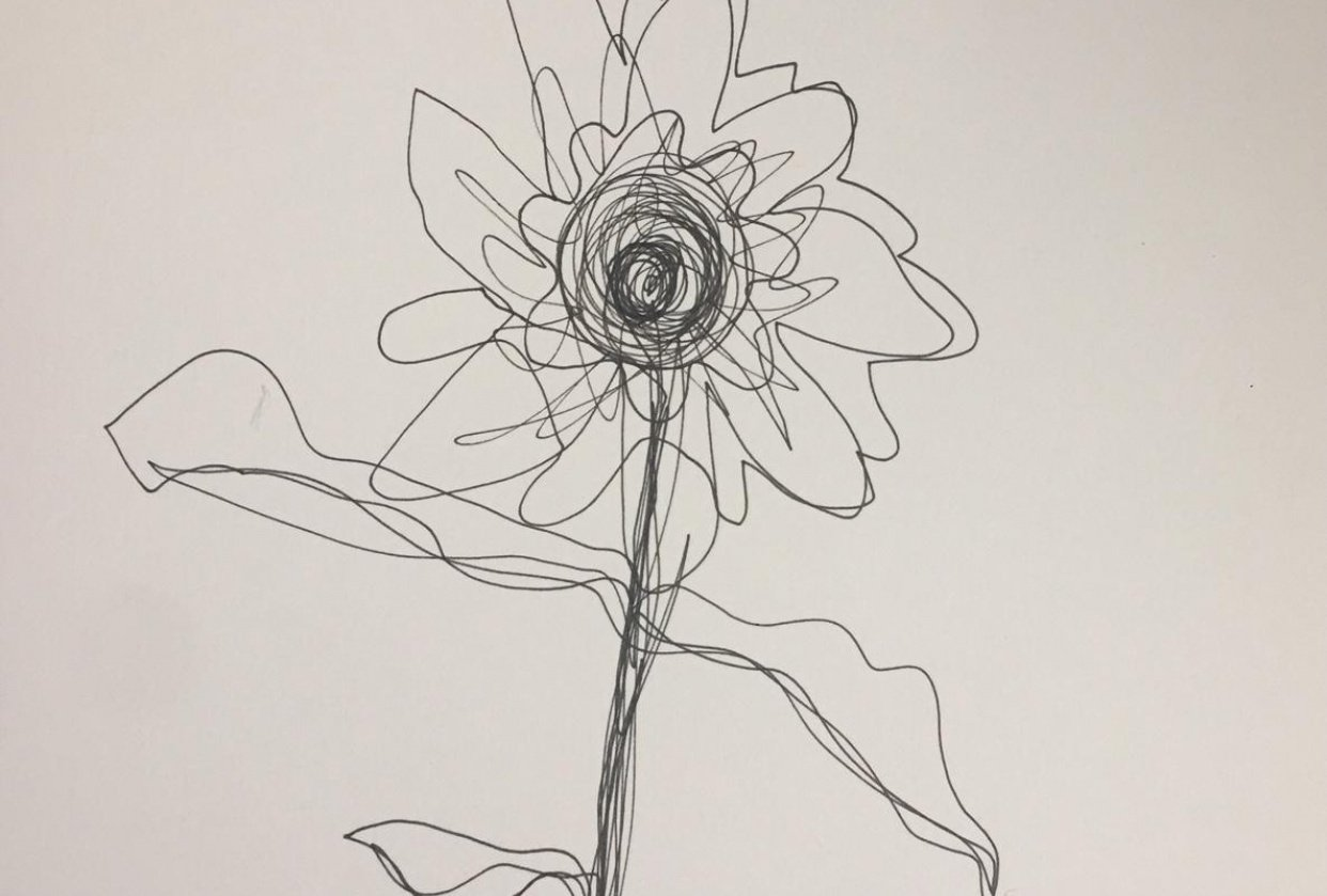 Sunflower in ink - student project