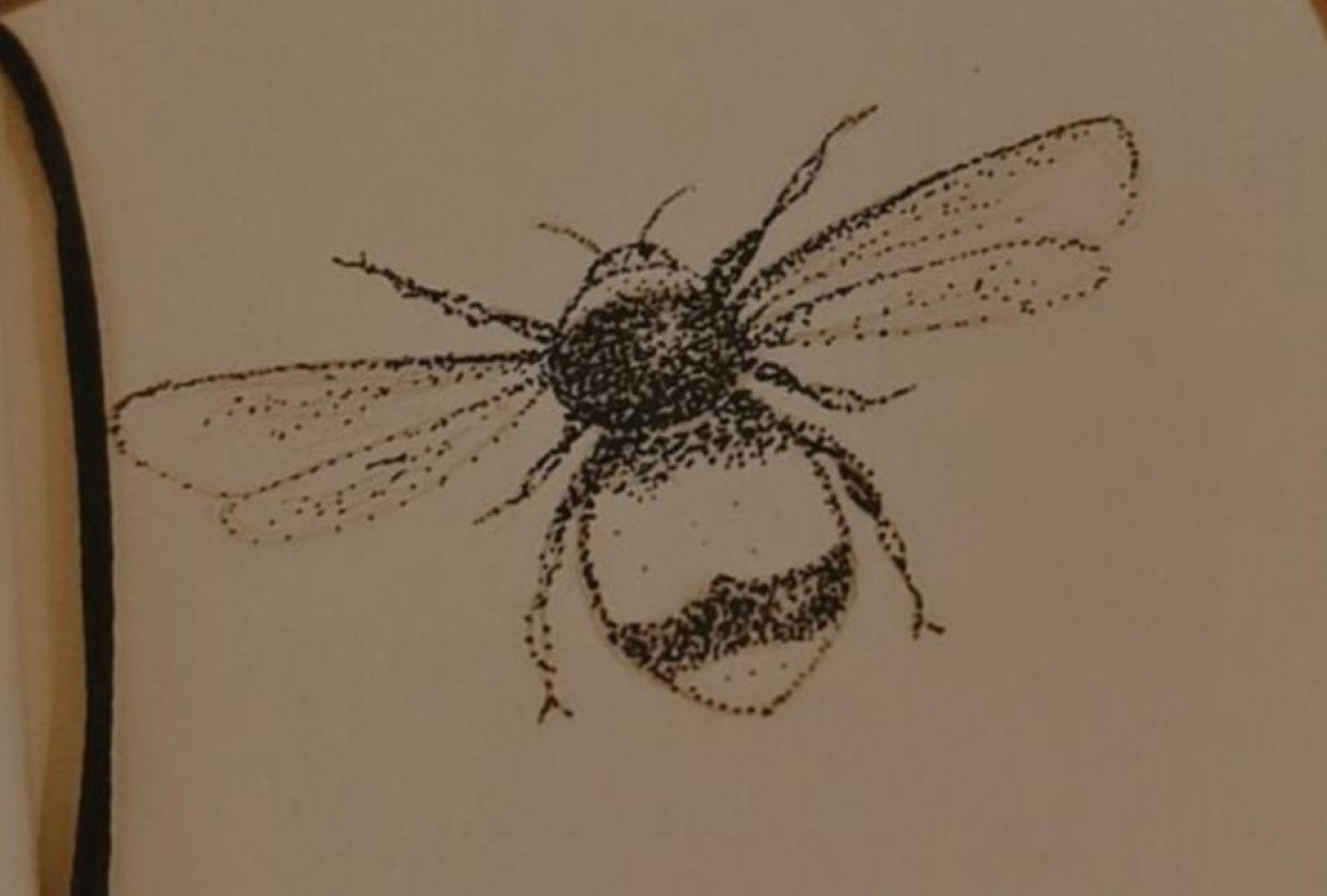 bee stipple - student project