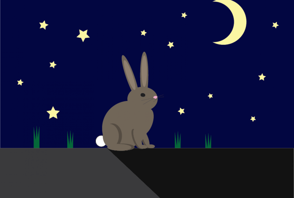 Bunny - student project