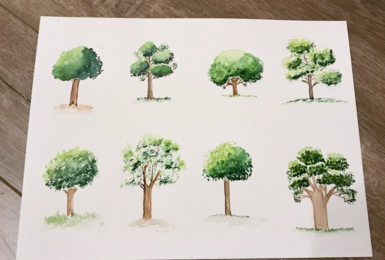 Eight Trees - student project