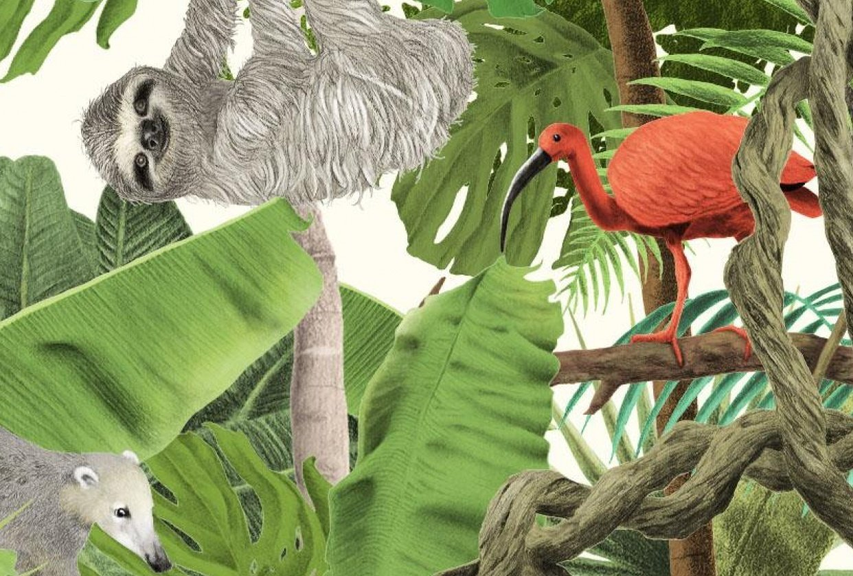 Jungle Scene - student project