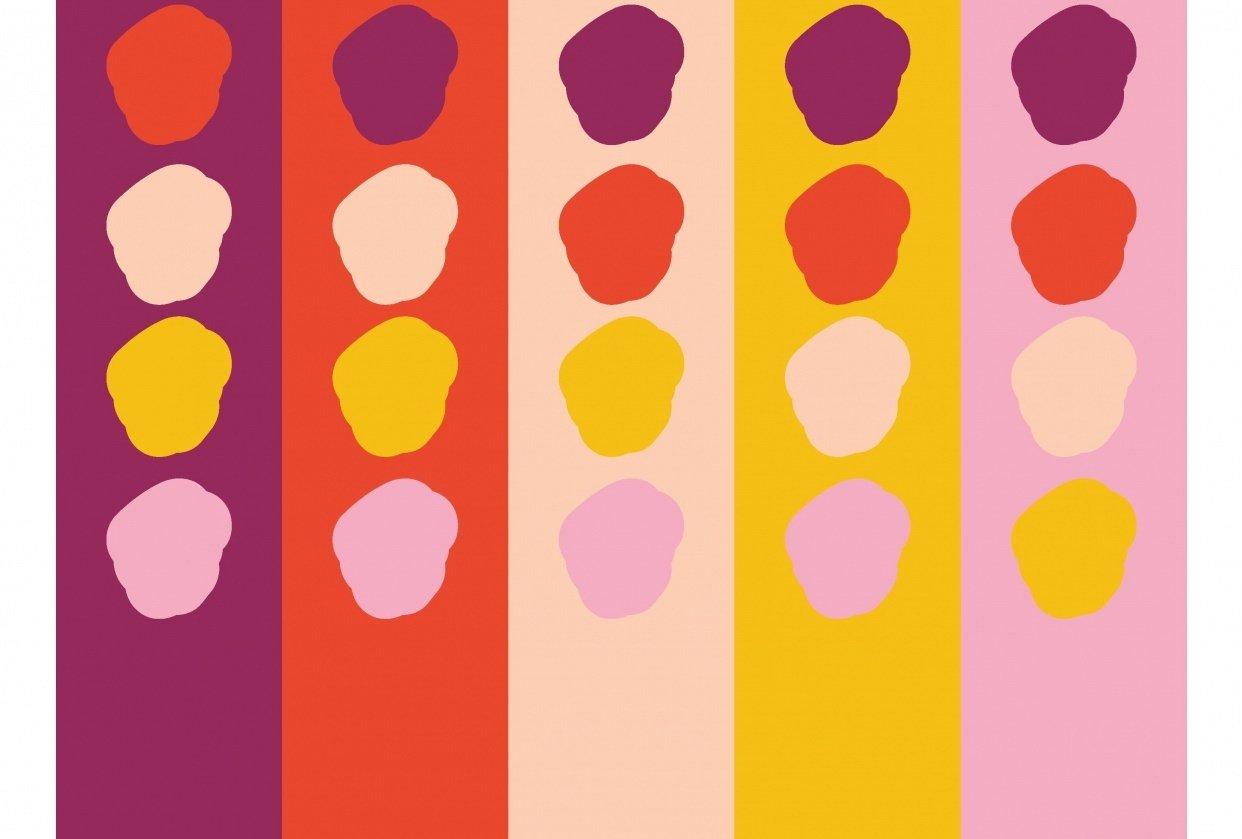 Colour Palette - student project