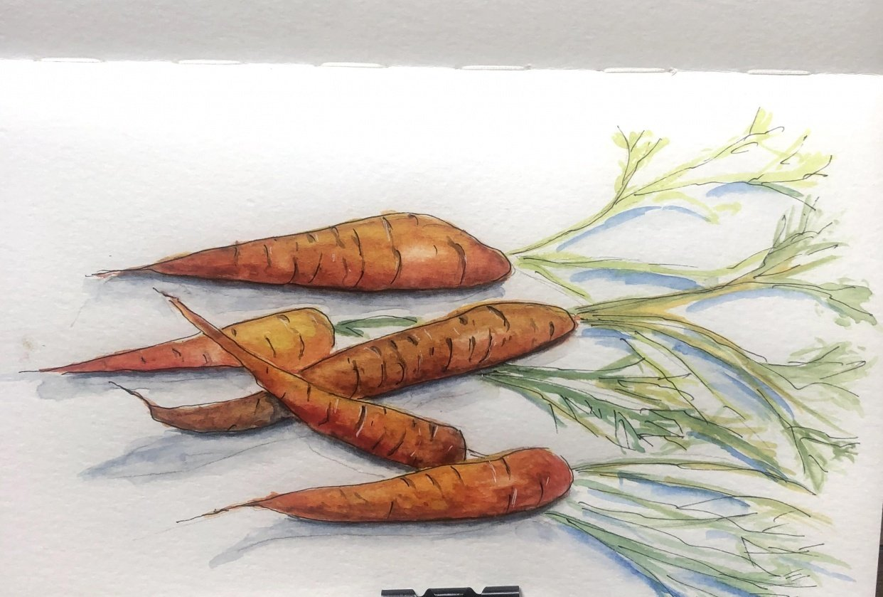 My Carrots - student project