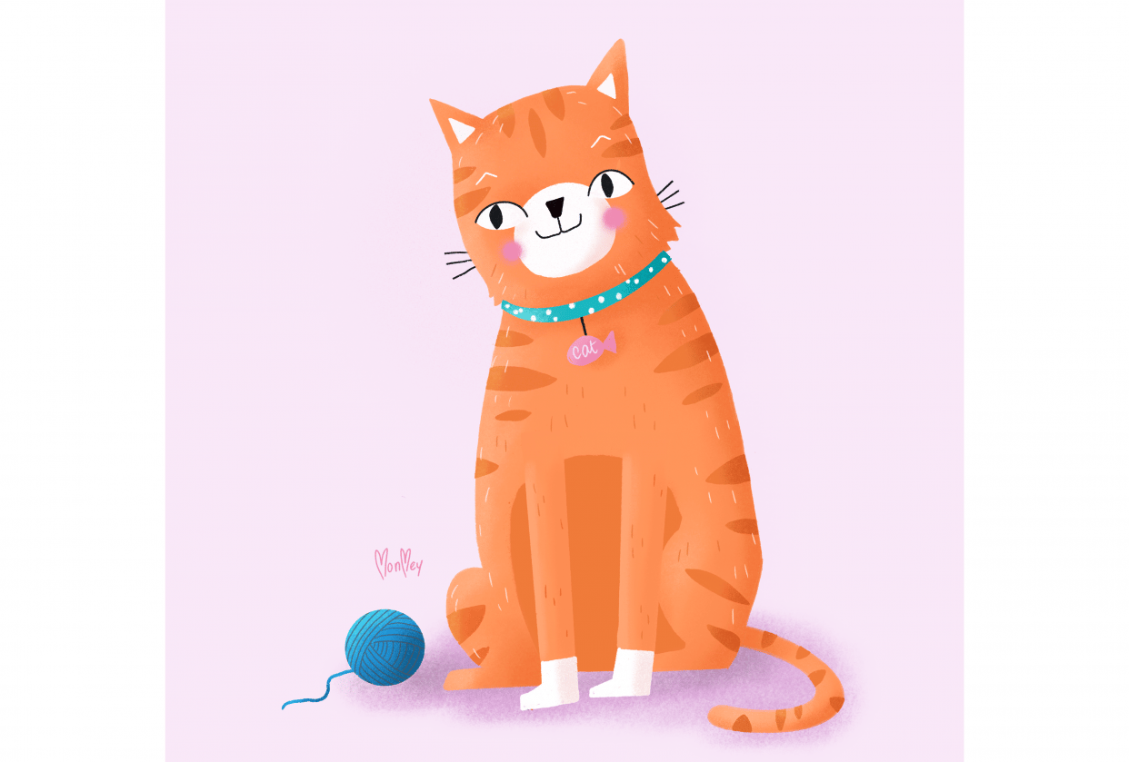 Draw a Cat - student project