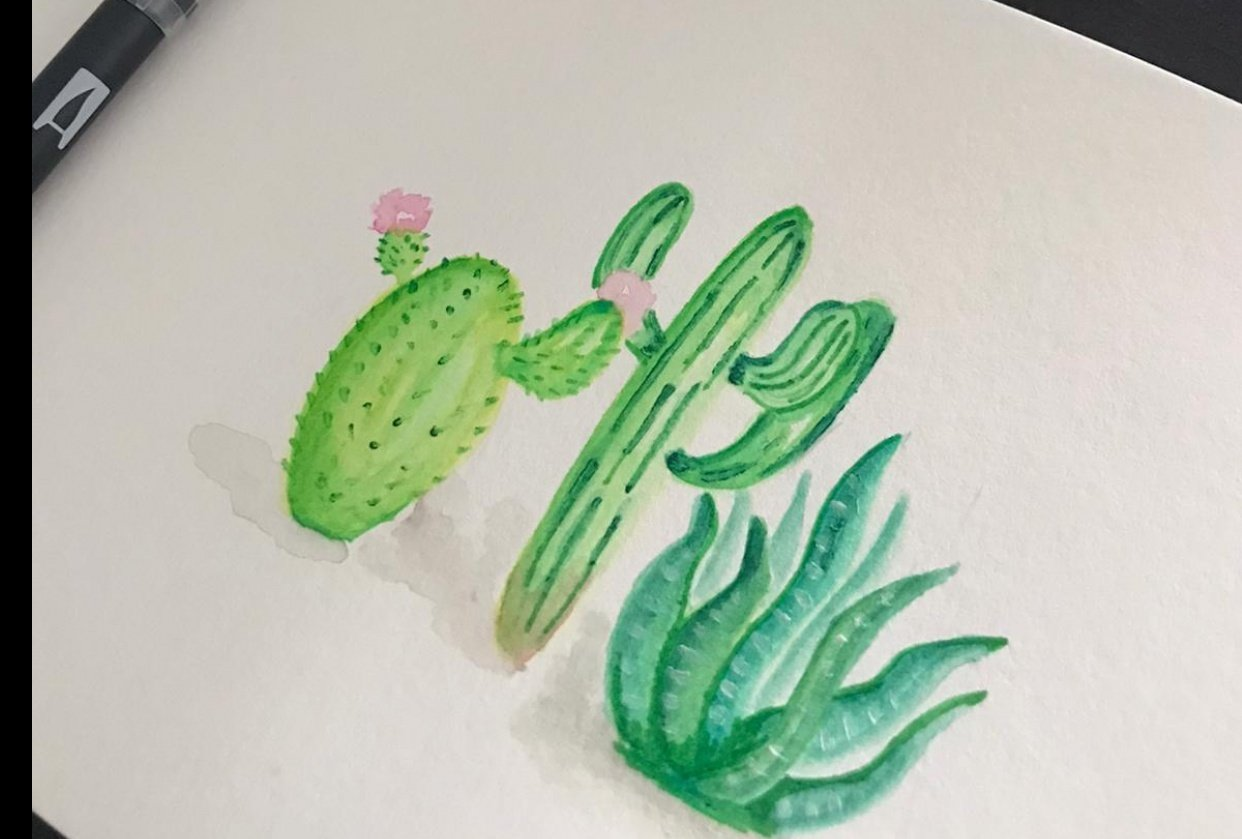 Watercolor Cacti & Succulents - Audrey - student project