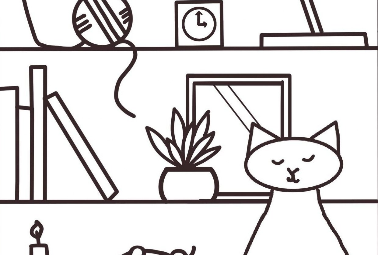 Cat on a shelf - student project