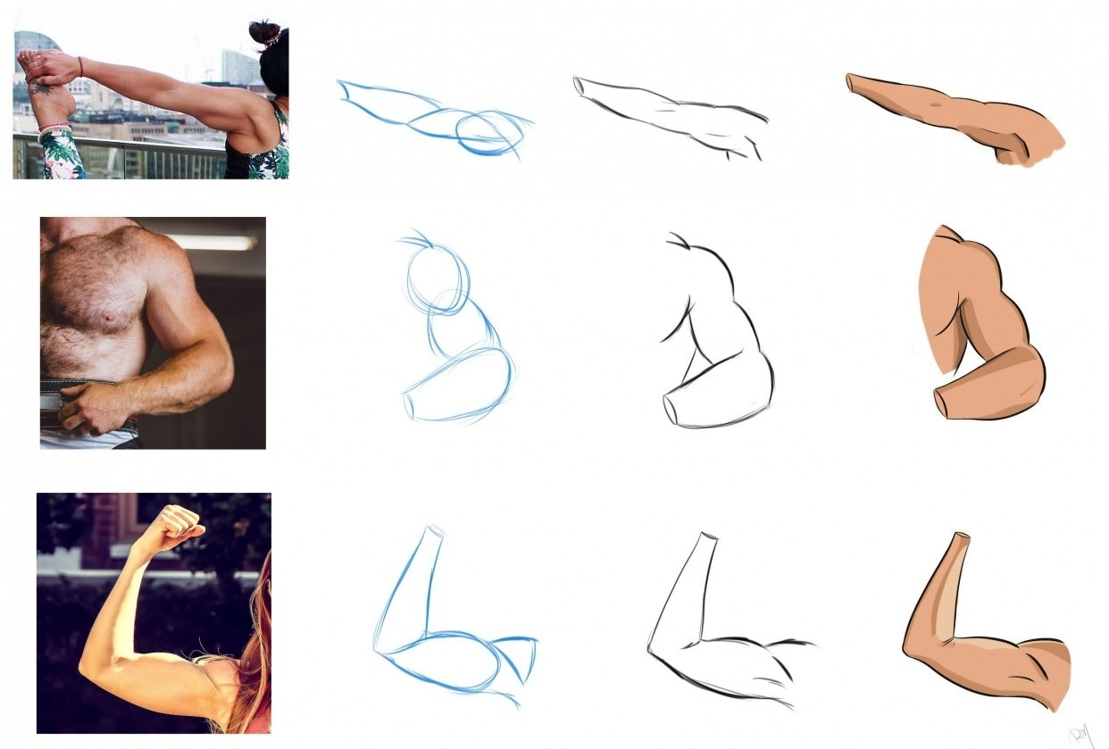 How to draw arms - Assignment - student project