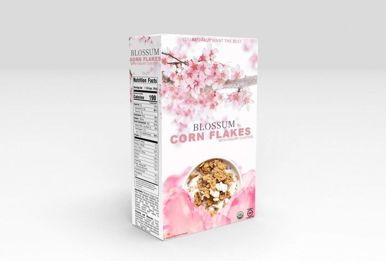 Package Design 1: Project - student project