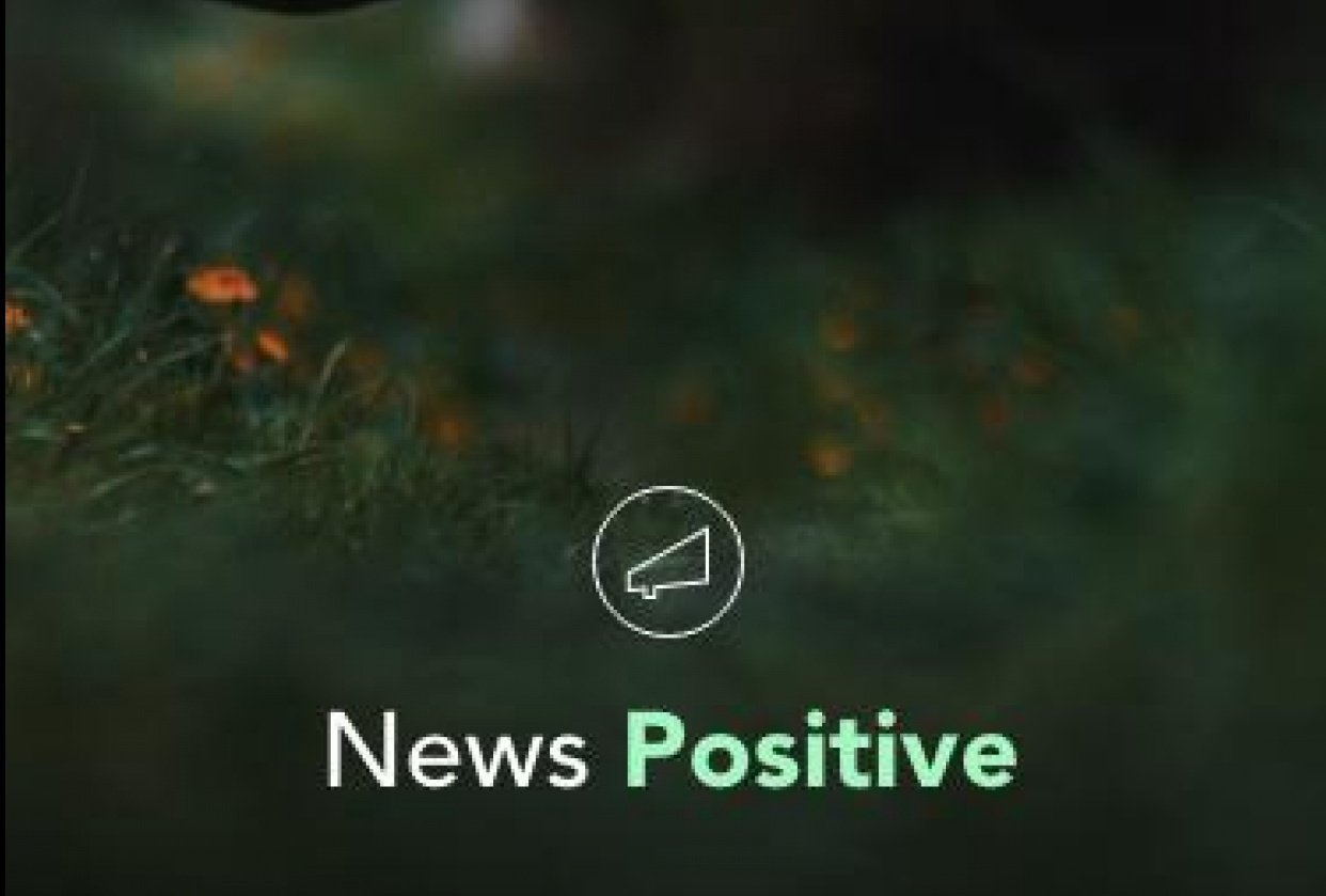 News Positive - News with a twist - student project