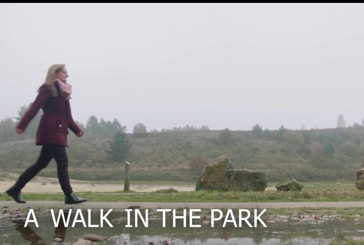 A walk in the park TikTok meme - student project