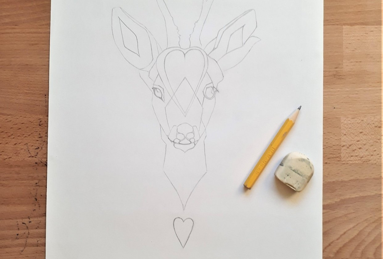 Roe Deer - student project