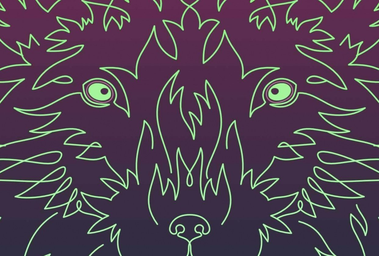 Linear Fox - student project