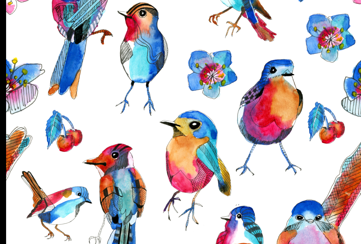 Spring birds - student project