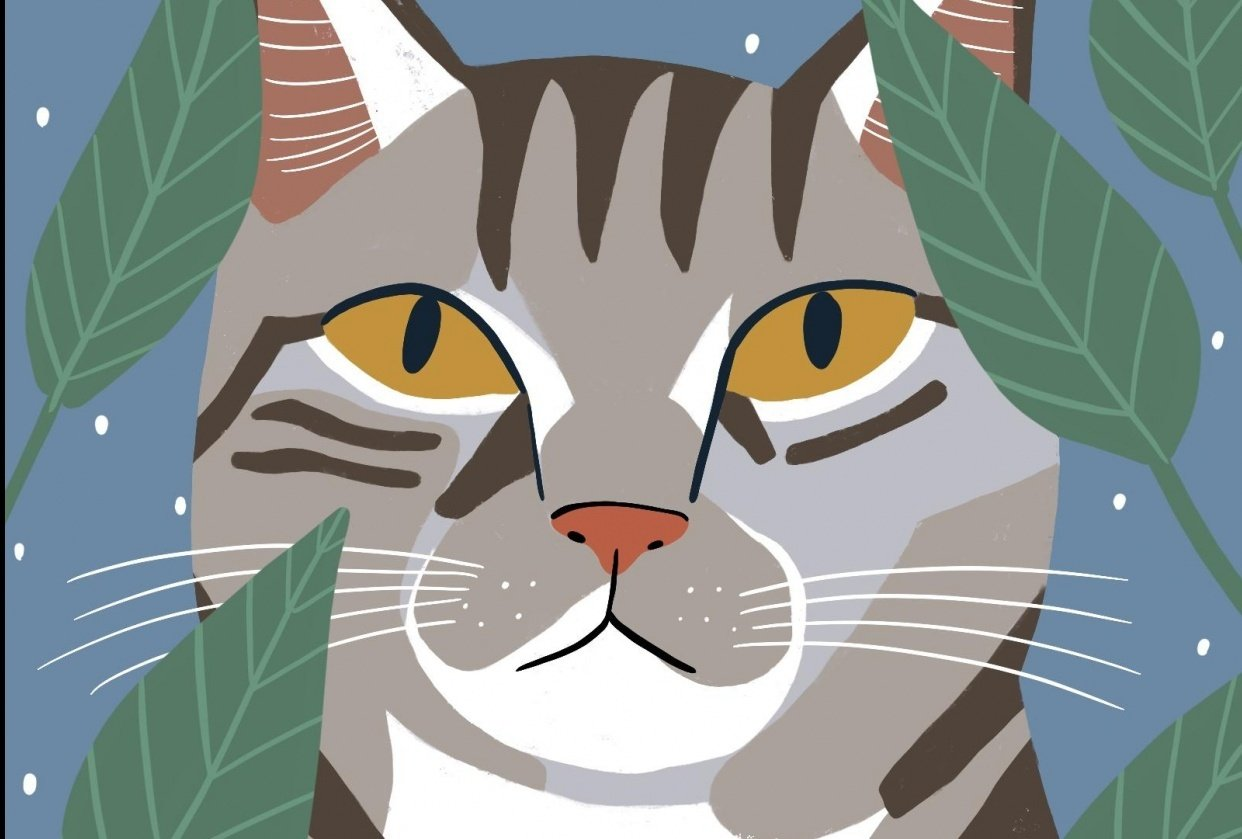 A Portrait of my Cat Moon - student project