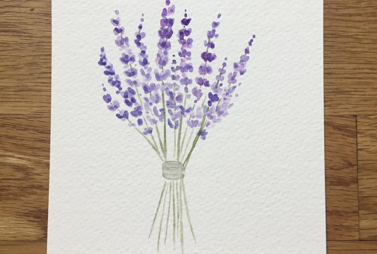 Lavenders - student project