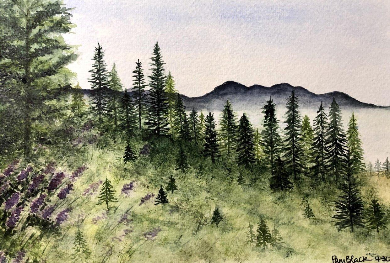 Landscape Practice - student project