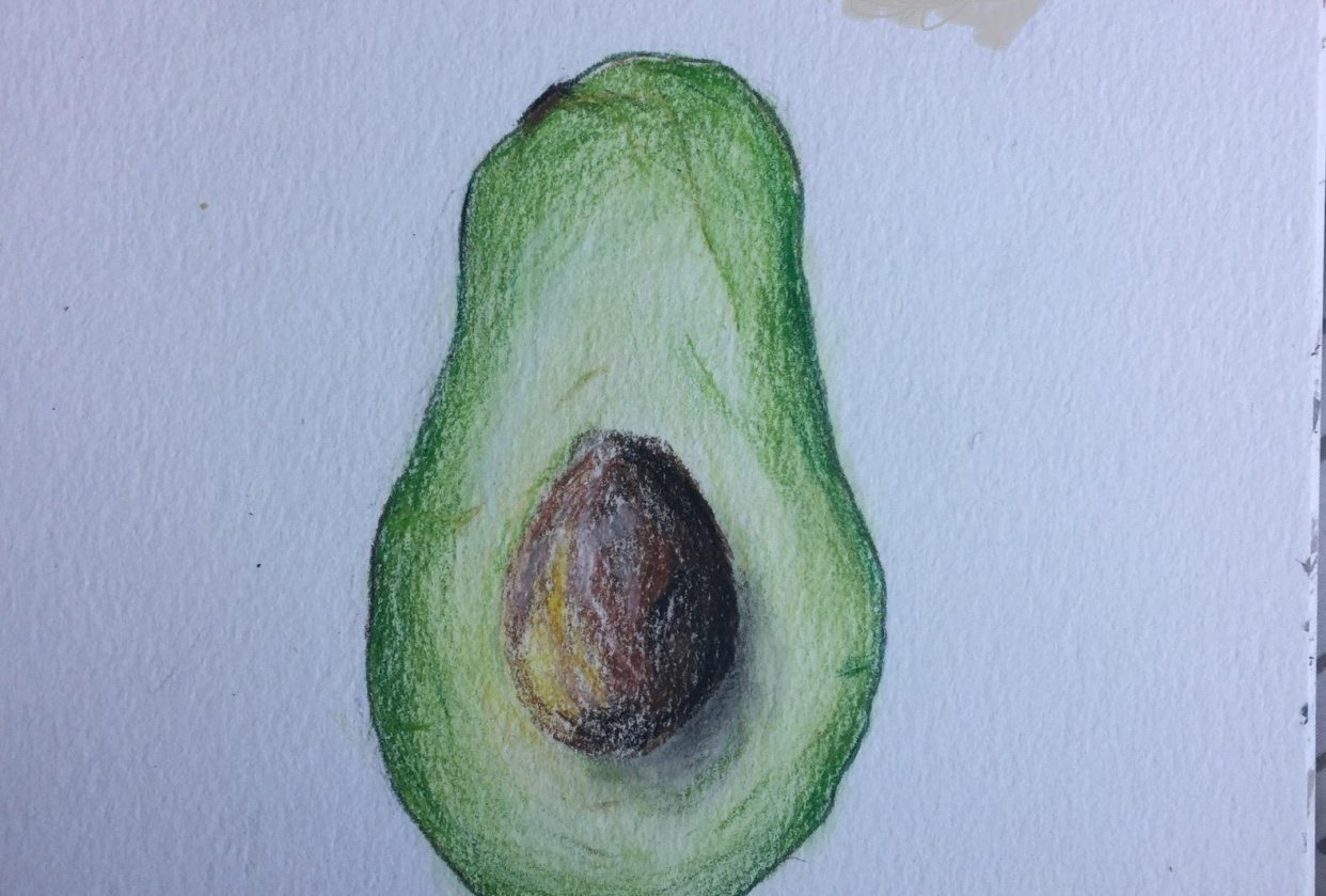 Avocado - student project