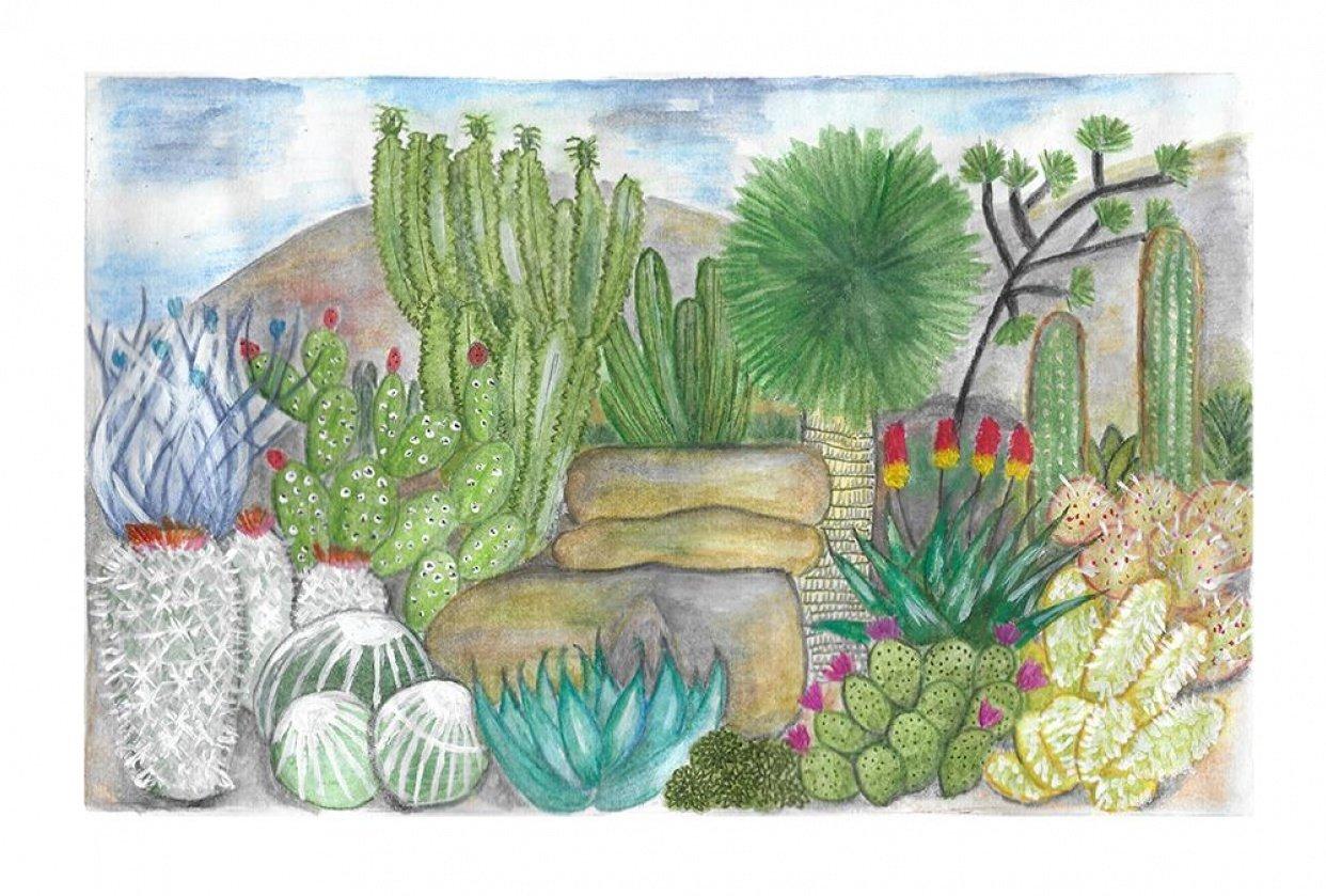 Desert Landscape - student project
