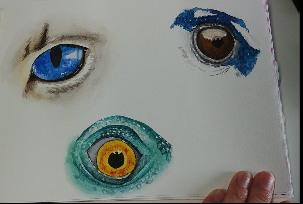 Lovely eyes - student project