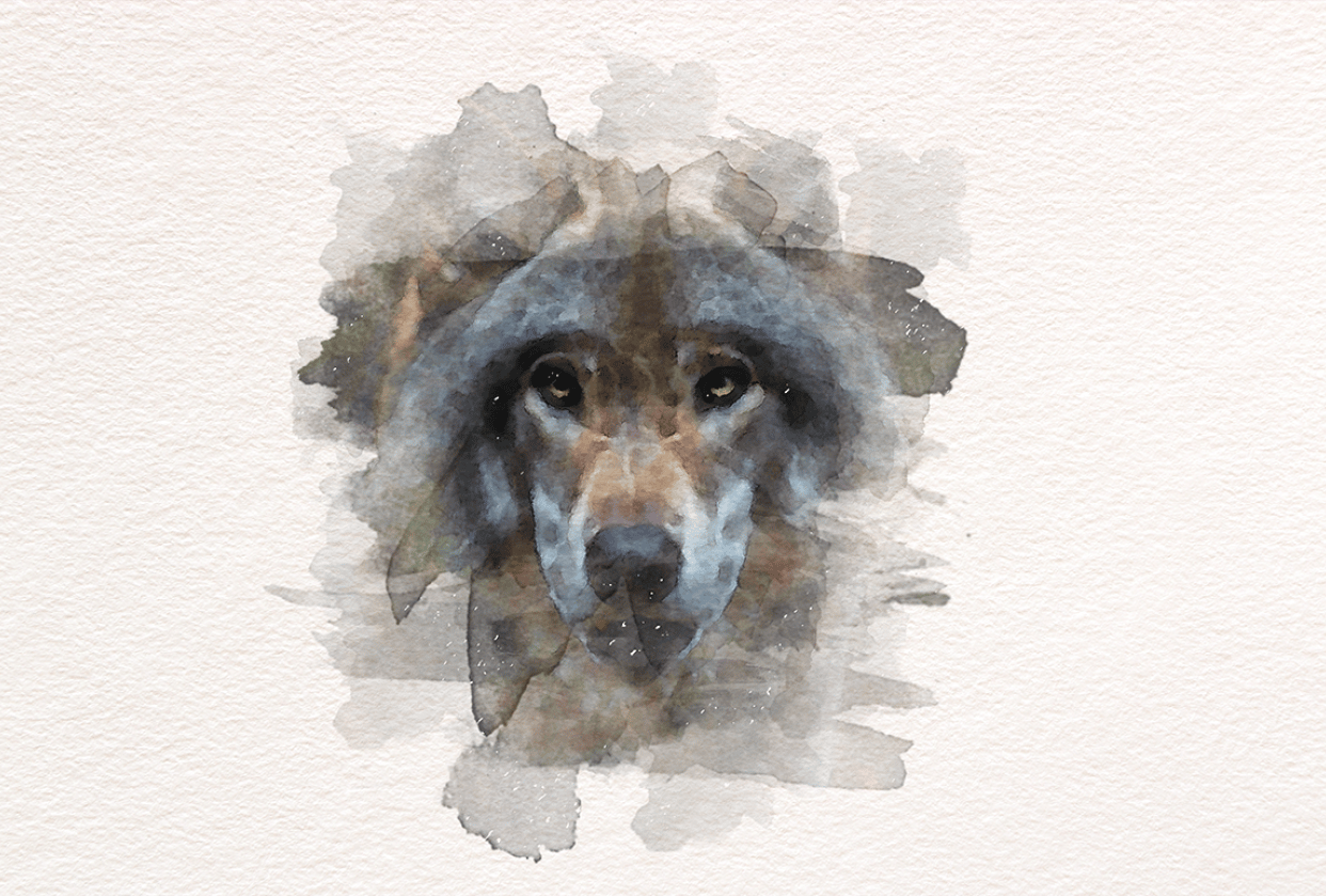 Watercolor Wolf - student project