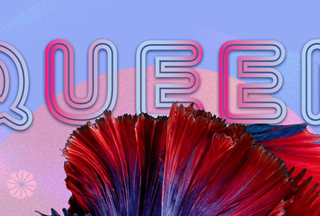 Queen - student project