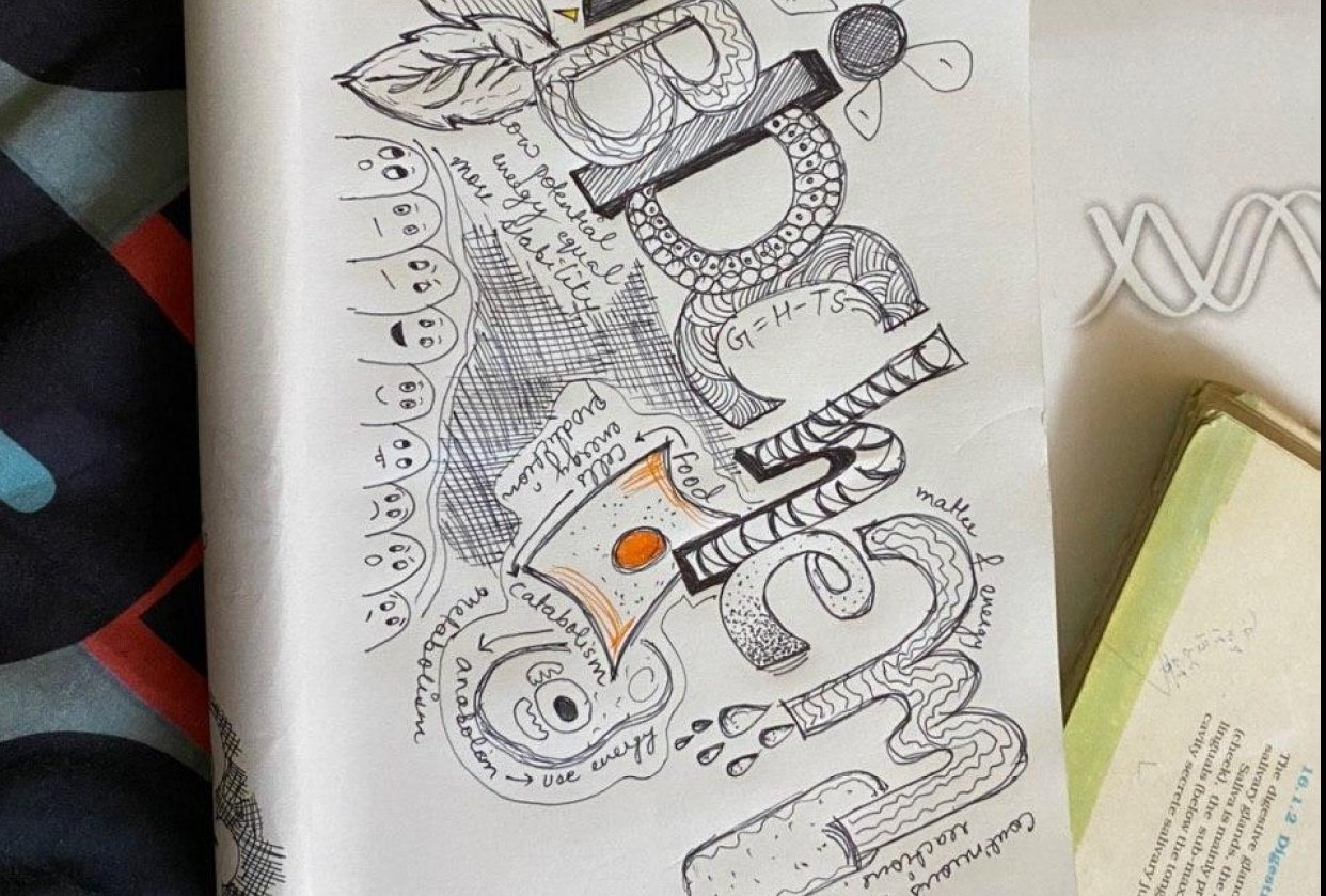 Biochemistry Doodle - student project