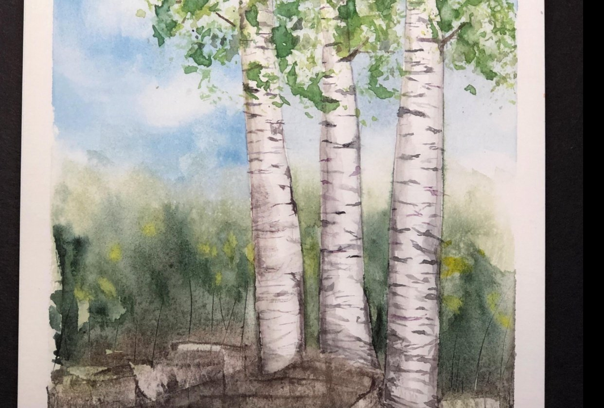 Deciduous Trees - student project