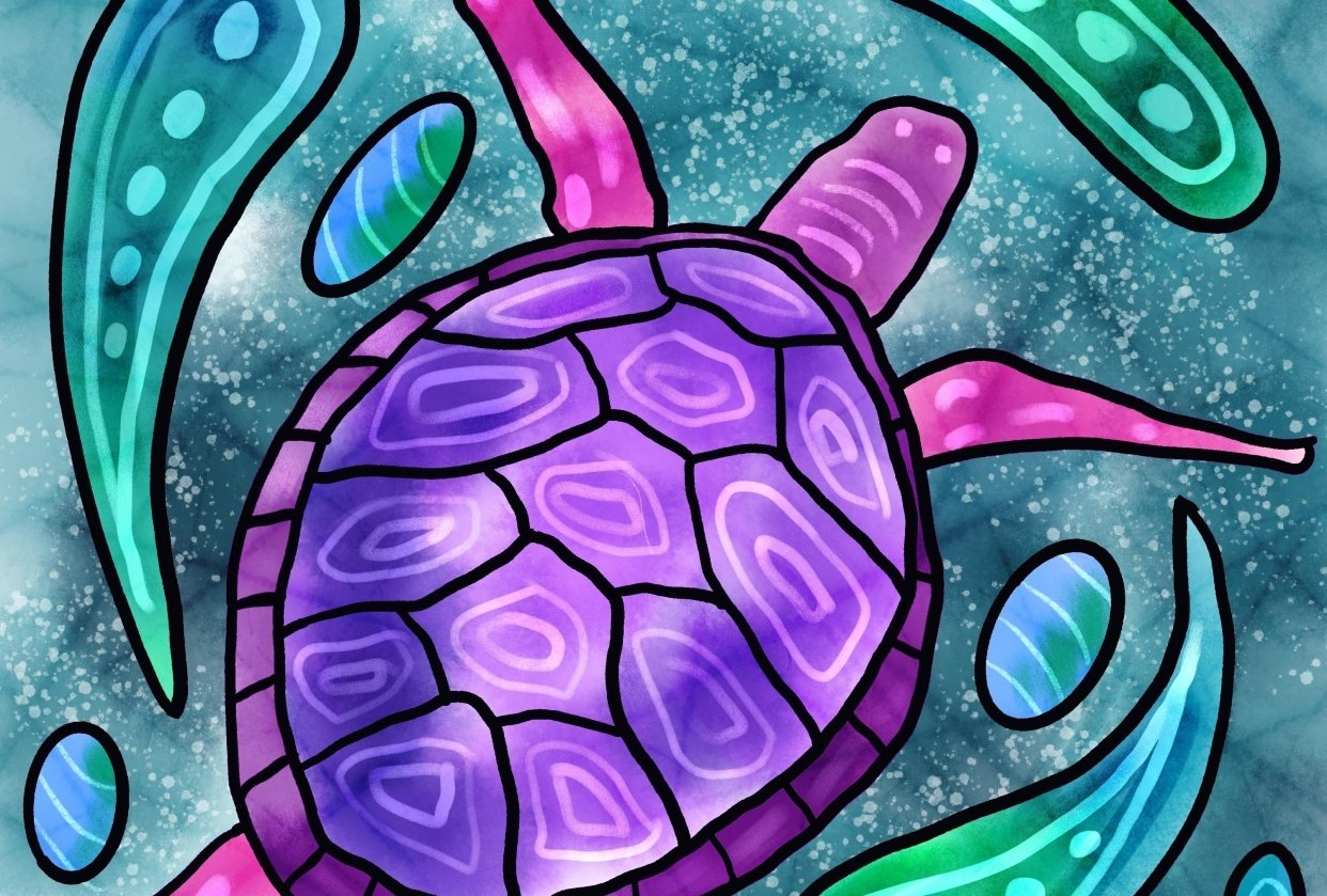 My Turtle - student project
